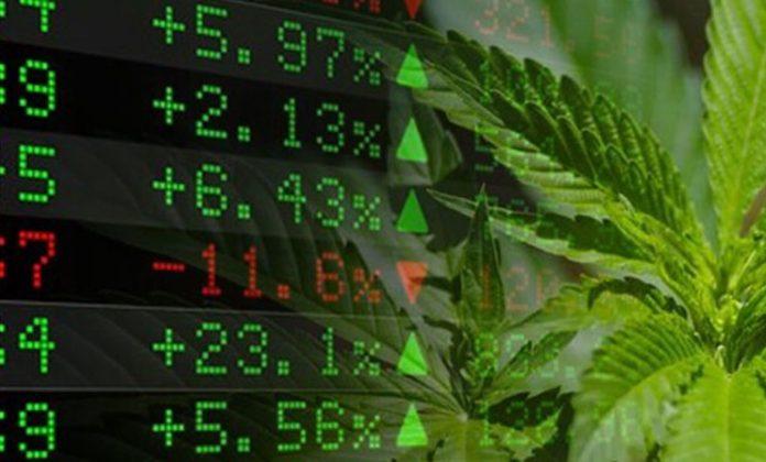 marijuana stocks investing