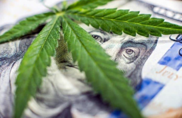 marijuana stocks money